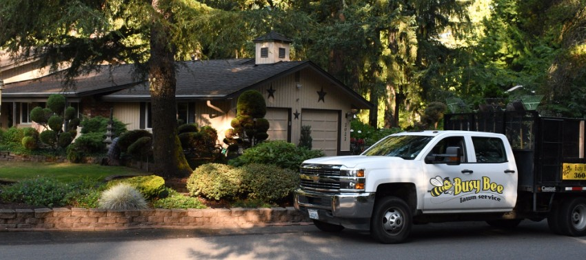 Busy Bee Lawn Service in Olympia Washington